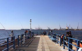 横浜海釣り
