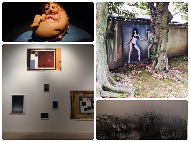 六本木・森美術館と、品川・原美術館
