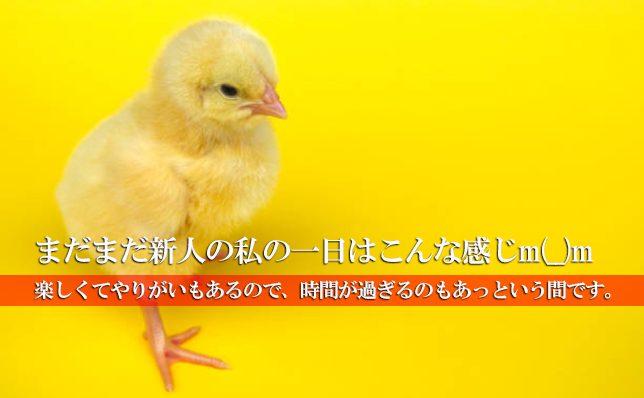 五反田エリア の記事